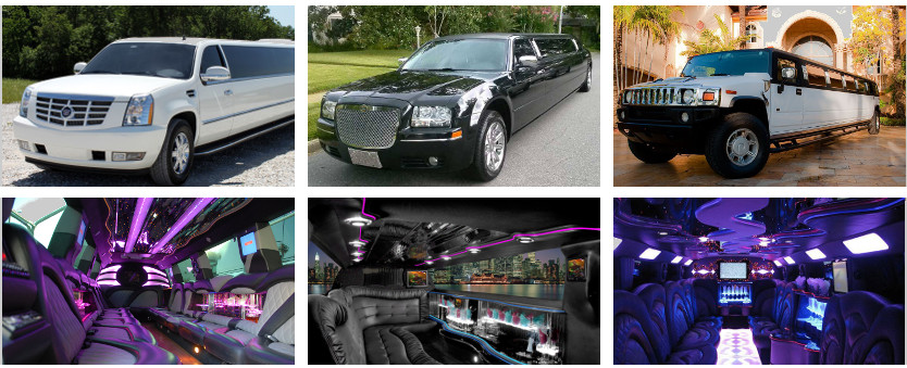 party-buses-for-rent-in-madison Madison Party Bus Rental