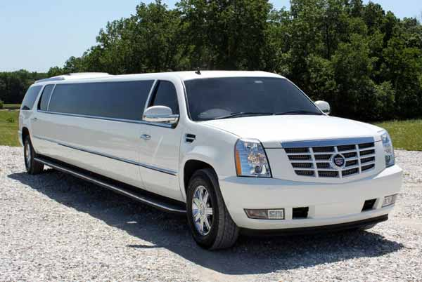 18-passenger-party-bus-Racine Party Bus Racine, WI – Limo Service