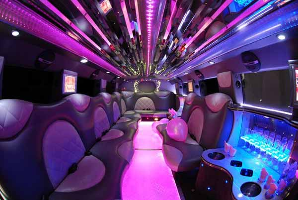 18-passenger-party-bus-Franklin Party Bus Franklin, WI – Limo Service