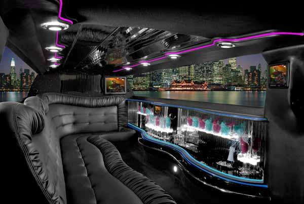 18-passenger-party-bus-Butler Party Bus Butler, WI – Limo Service